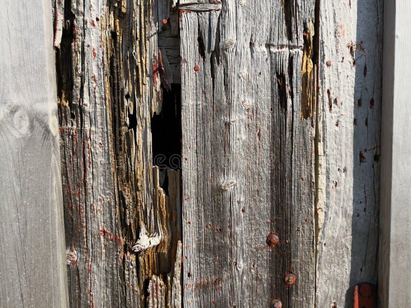 Una parete della plancia su una costruzione da pesca in Norvegia fotografia stock libera da diritti