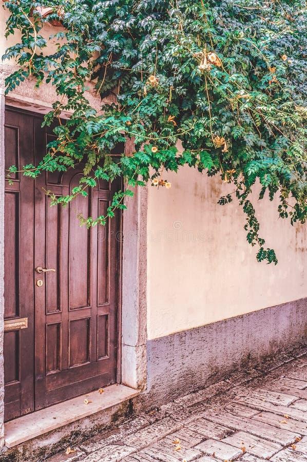Una parete di pietra decorata con il campeggio e l'edera verdi è una porta marrone Inverdimento verticale delle città immagine stock