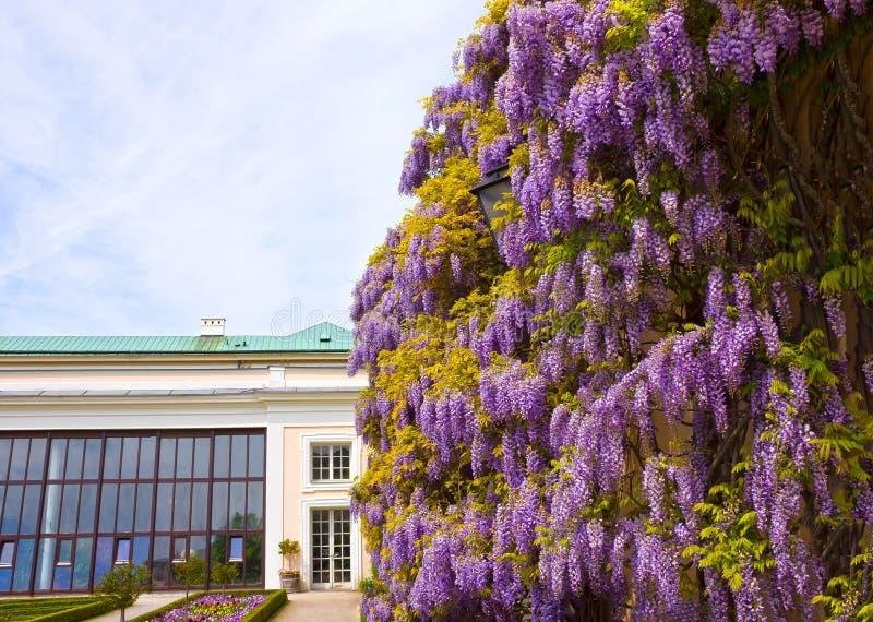 Una parte di bello Mirabell fa il giardinaggio a Salisburgo fotografia stock