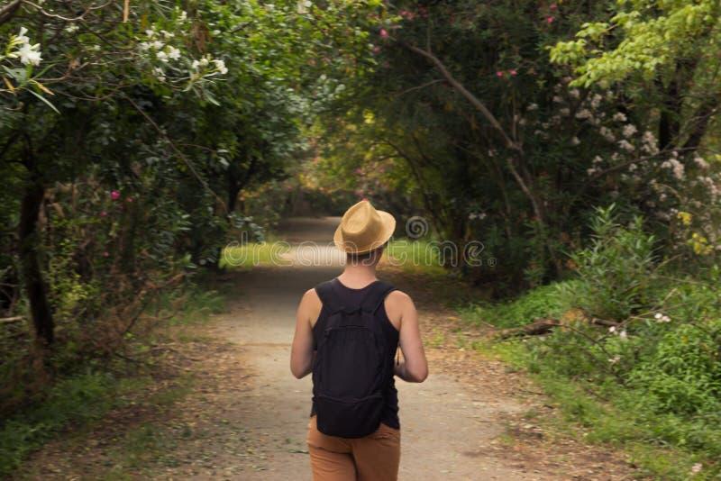 Una parte posterior del hombre joven, vista posterior, bosque al aire libre del pensamiento que camina, a fotos de archivo libres de regalías