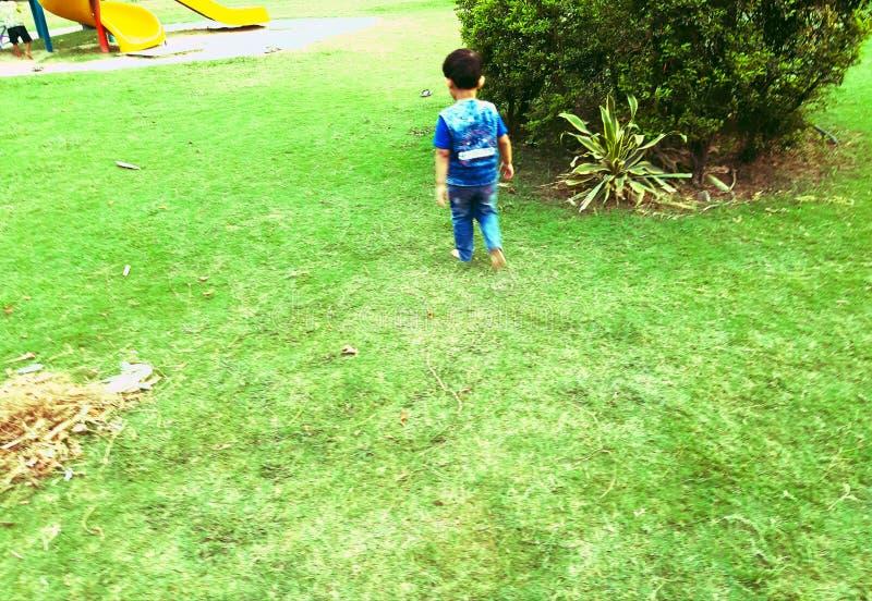 Una passeggiata di mattina del bambino nel parco immagini stock