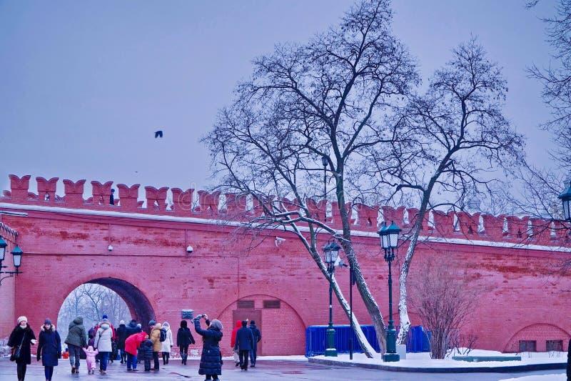 Una passeggiata nel parco nell'inverno immagine stock libera da diritti