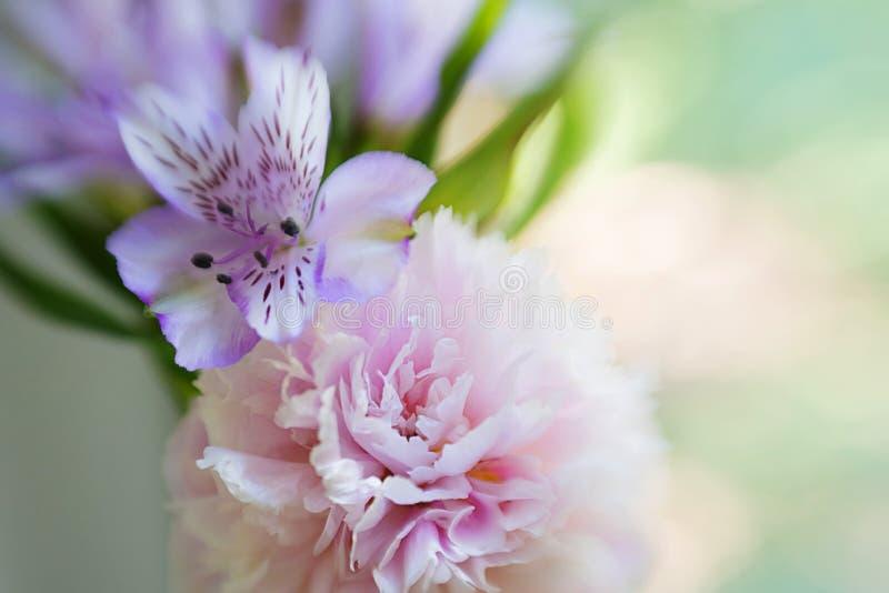 Una peonía rosada grande casi destapada en un florero y un iris contra una ventana con verdor detrás del vidrio, con el foco suav imagen de archivo libre de regalías