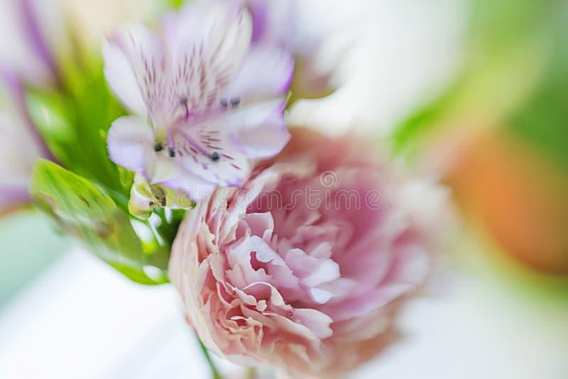 Una peonía rosada grande casi destapada en un florero y un iris en un fondo del travesaño, con el foco suave y empañar fuerte fotografía de archivo