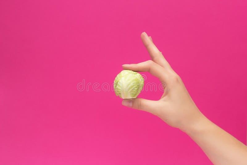 Una pequeña cabeza de la col en la mano de una muchacha en un fondo rosado, el concepto de vegetarianismo y la dieta, espacio de  foto de archivo libre de regalías