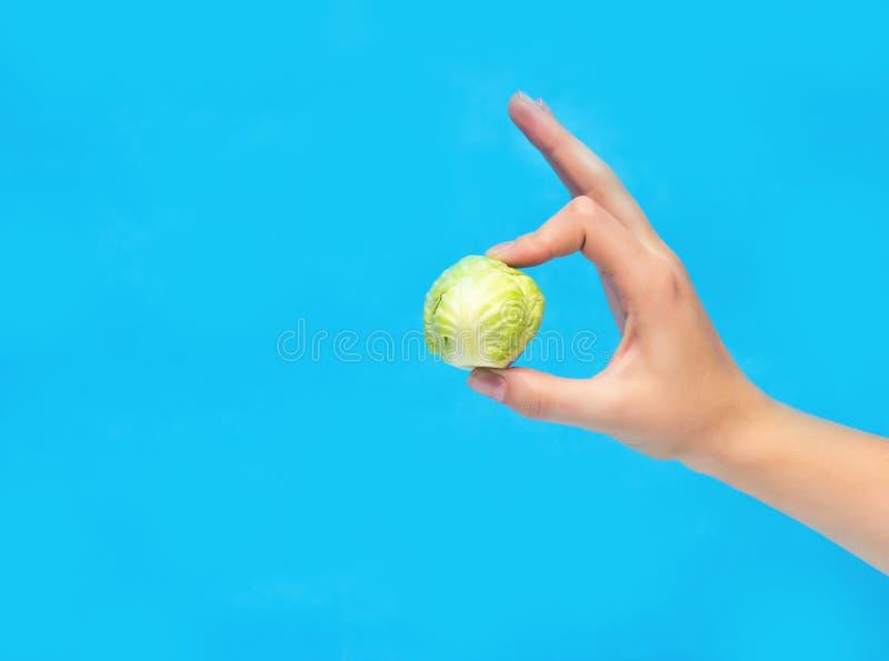 Una pequeña cabeza de la muchacha de la col se sostiene en su mano en un fondo azul, dieta, vegetarianismo, primer, espacio de la fotos de archivo