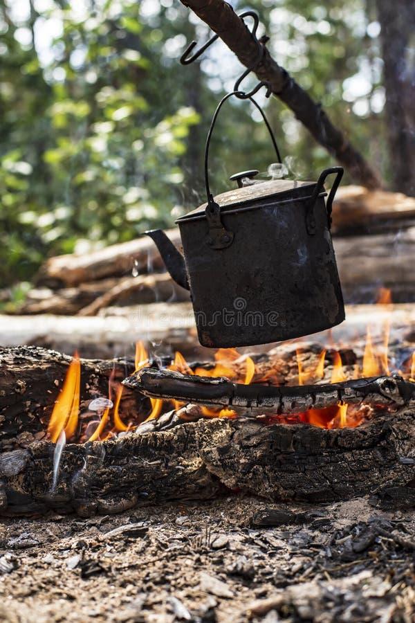 Una pequeña caldera con agua se calienta en un fuego, en un bosque, en un día soleado del verano foto de archivo libre de regalías