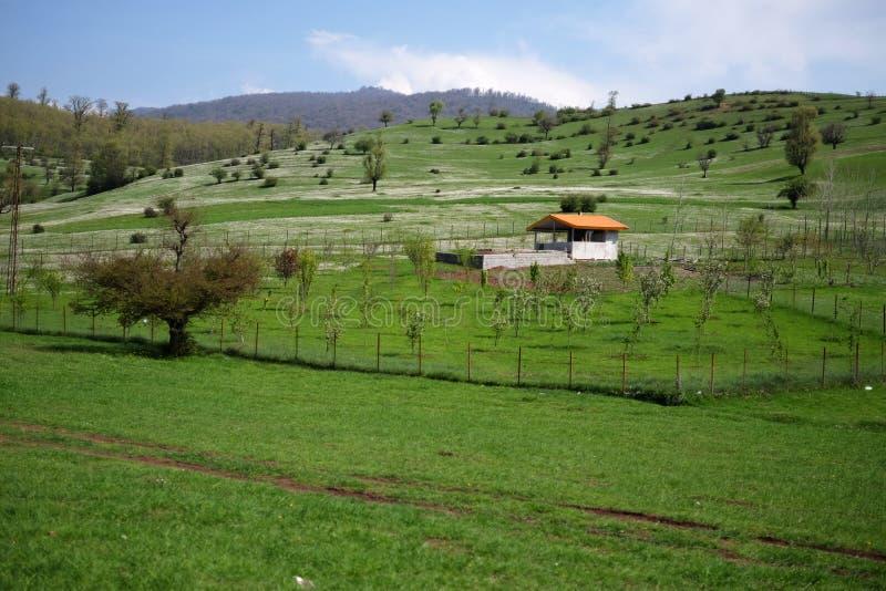 Una pequeña casa en el medio de un campo verde imagen de archivo libre de regalías