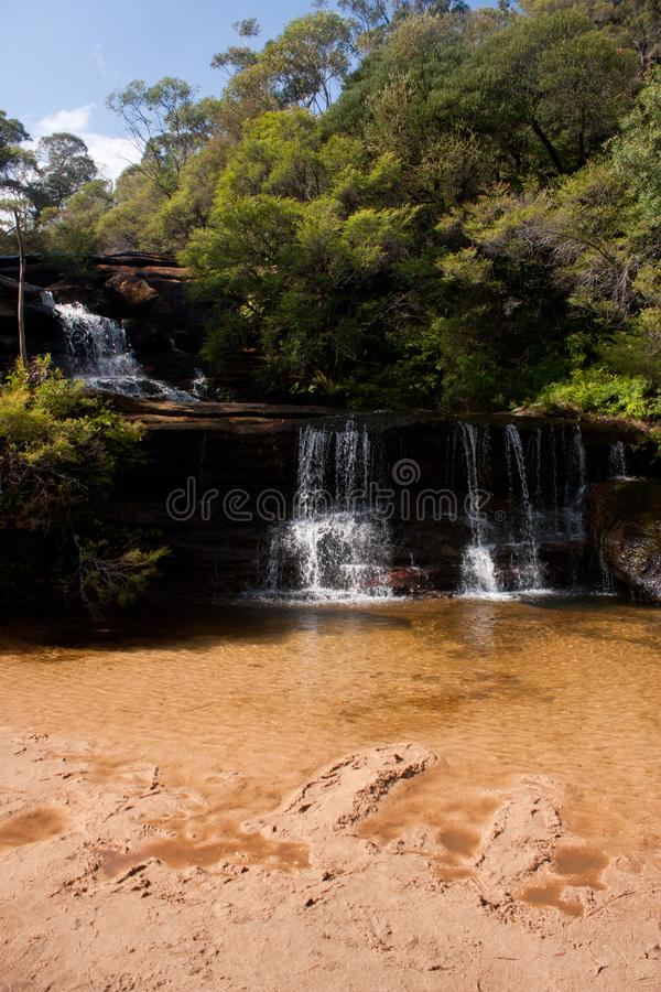 Una pequeña cascada en la cima de Wentworth Falls en las montañas azules en Australia fotografía de archivo