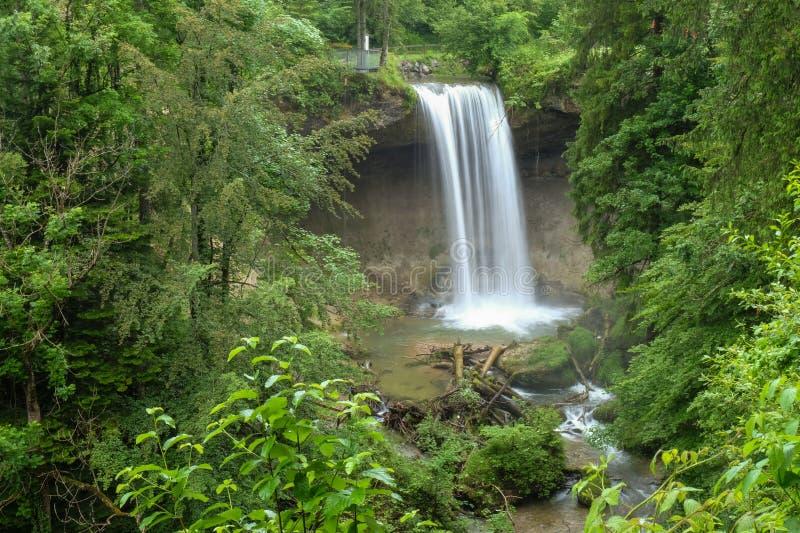 Una pequeña cascada hermosa en un bosque verde en Baviera Alemania fotos de archivo libres de regalías