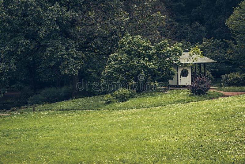 Una pequeña cascada que fluyendo de la selva verde de la selva tropical a la charca en Japón fotografía de archivo libre de regalías