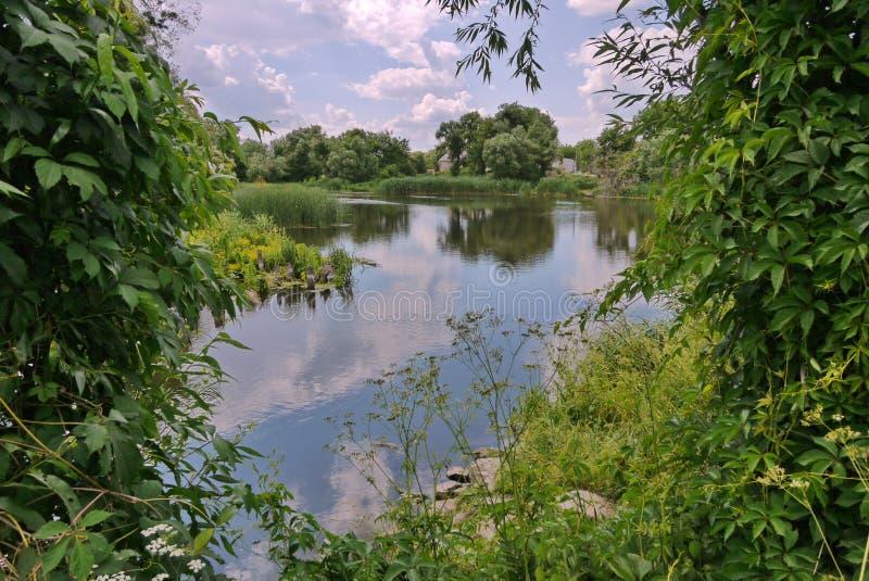 Una pequeña charca en el campo con las cañas y las rocas crecientes cerca de la orilla Un buen lugar para el resto y la pesca imagenes de archivo