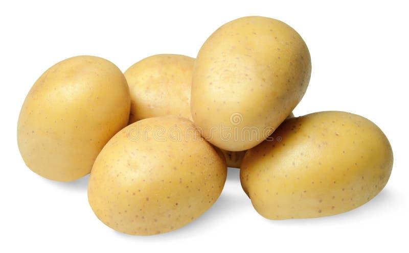 Una pequeña pila de patatas lavadas limpias en un fondo aislado blanco Primer imágenes de archivo libres de regalías