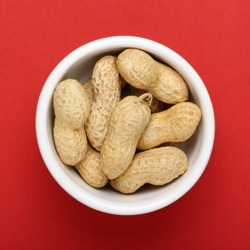 Una pequeña porción de cacahuetes imagen de archivo libre de regalías