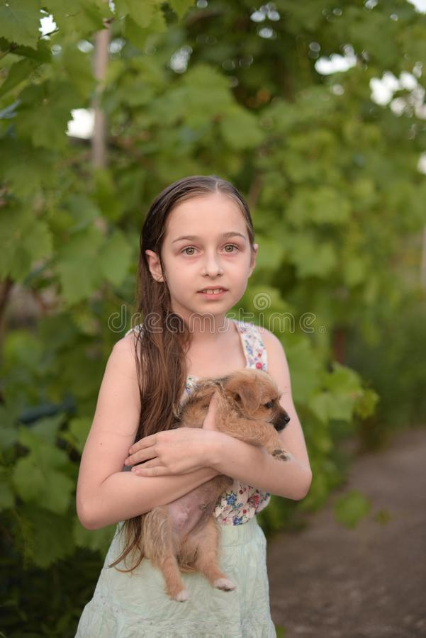 Una peque?a muchacha rubia con sus outdooors del perro casero en parque imagenes de archivo