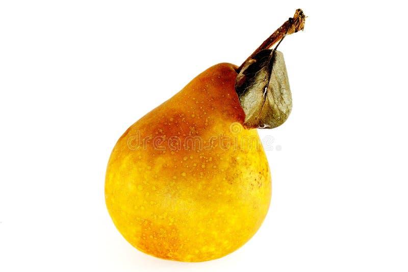 Una pera gialla e marrone sugosa fotografia stock libera da diritti