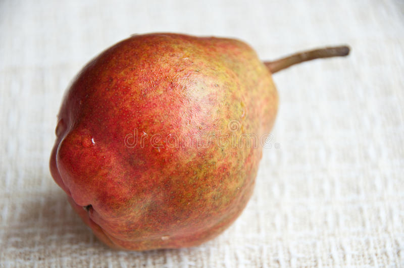Ciérrese para arriba de una pera de bartlett orgánica en una servilleta del paño fotografía de archivo