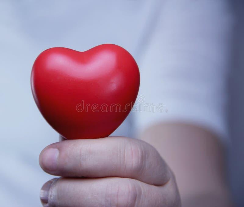 Una persona che tiene un cuore rosso fotografie stock libere da diritti