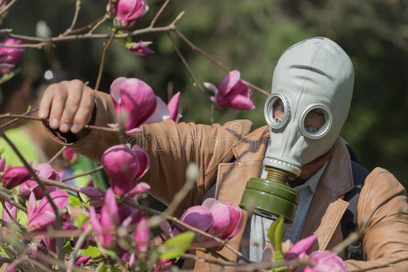 Una persona en careta antigás que explora las diversas plantas y flores infestadas imágenes de archivo libres de regalías