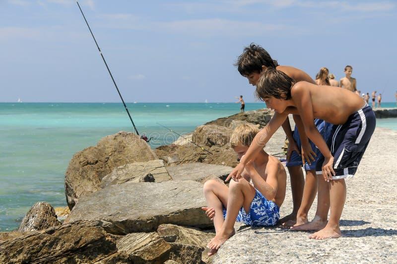 Una pesca dei tre ragazzi fotografia stock libera da diritti