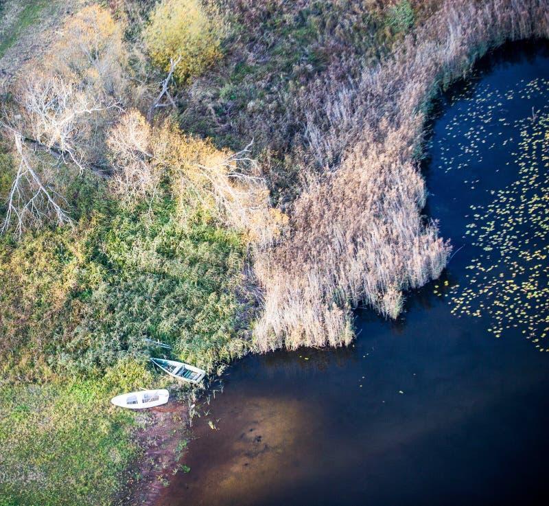 Una piccola barca atterrata sulla riva nelle canne di piccolo lago della foresta immagini stock