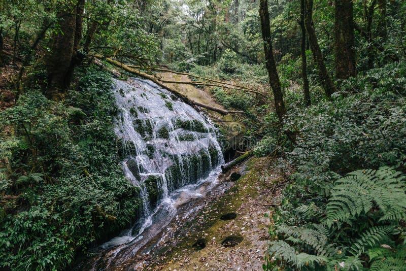 Una piccola cascata che è venuto dalle torrenti montano Tutta la corrente sfocia nel fiume e Chao Praya River di rumore metallico fotografia stock libera da diritti