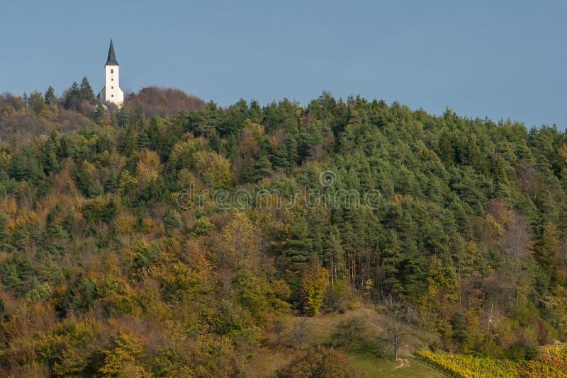Una piccola chiesa in cima a una collina nella foresta colorata dai colori tipici autunnali di Zrece, Slovenia immagine stock libera da diritti