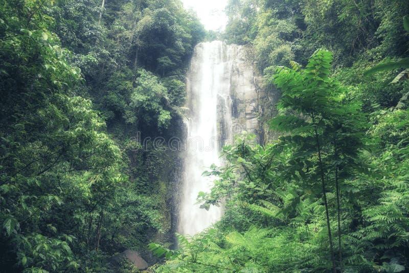 Una piccola e bella cascata di Tomohon Selatan in Sulawesi, mA immagini stock libere da diritti