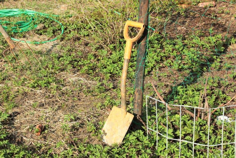 Una piccola pala nel giardino immagine stock