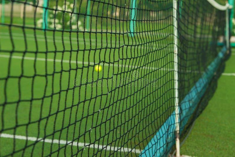 Una piccola pallina da tennis verde si trova dietro la griglia fotografia stock