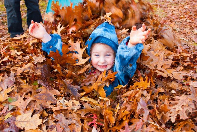 Una piccola ragazza felice che si gode una pila autunnale di foglie rastrellate fuori immagini stock libere da diritti