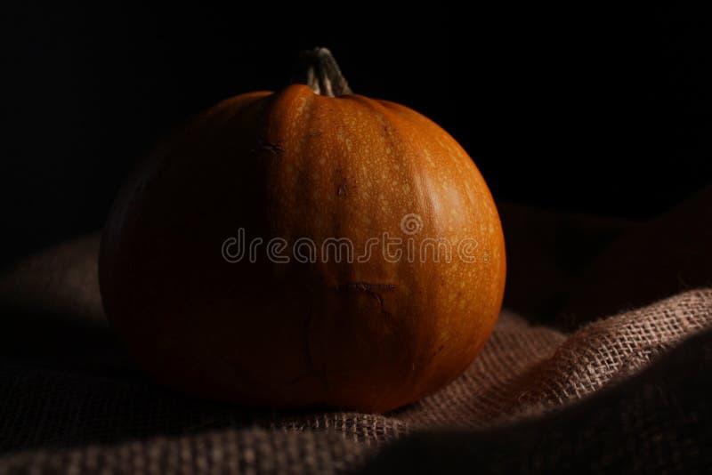 Una piccola zucca arancio si trova sulla tela da imballaggio immagini stock