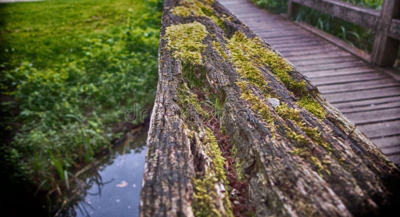 Una pieza de un puente de madera fotos de archivo
