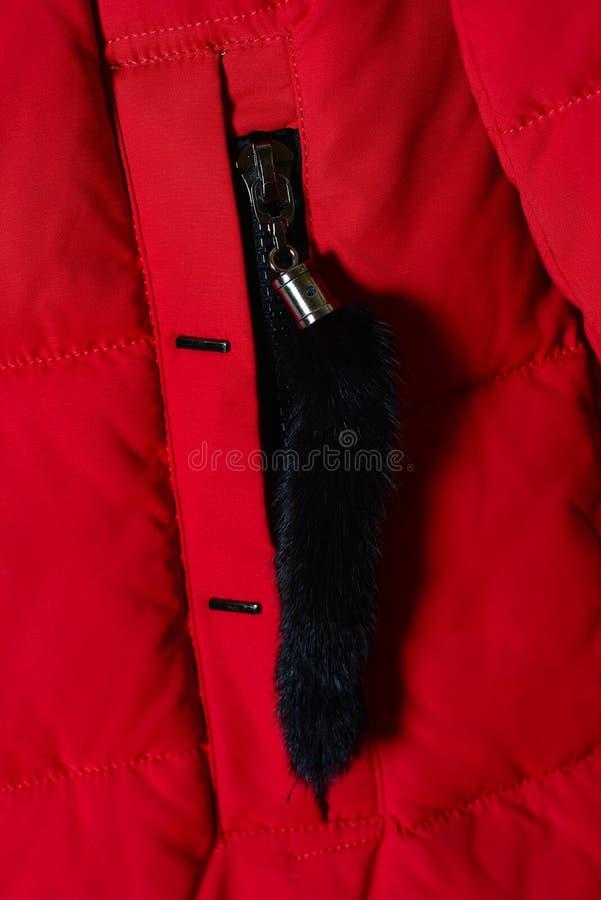 Una pieza del rojo de una chaqueta abajo, un bolsillo con una cremallera Chaqueta elegante 2018 del invierno imagen de archivo libre de regalías