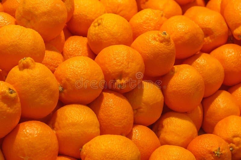 Una pila de frutas de las clementinas o de tangelo anaranjadas del minneola imágenes de archivo libres de regalías