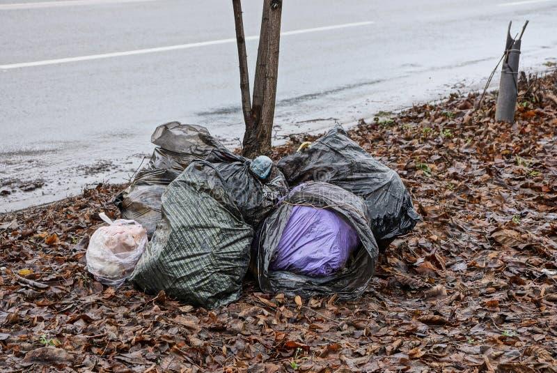 Una pila de las bolsas de plástico con desperdicios en las hojas caidas cerca del camino fotografía de archivo libre de regalías