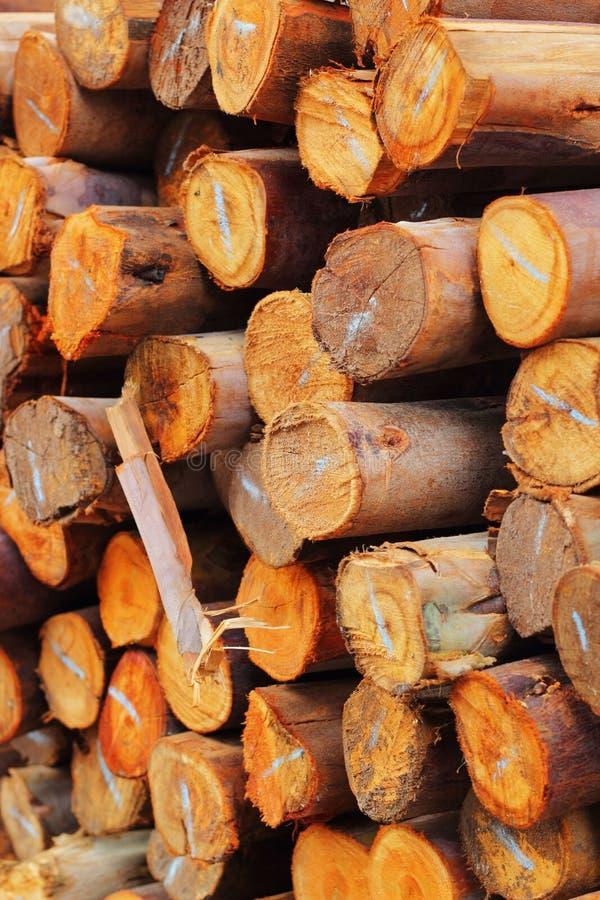 Una pila de madera. fotografía de archivo