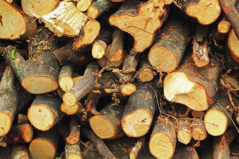 Una pila de madera. fotos de archivo libres de regalías
