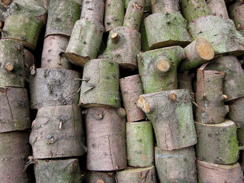 Una pila de troncos aserrados fotos de archivo libres de regalías