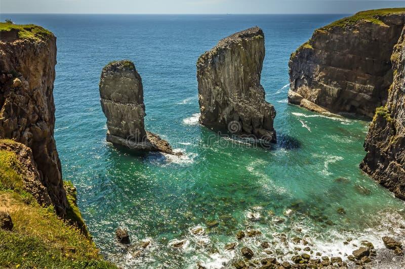 Una pila della roccia al largo popolata da Raverbill crescente Gulls sulla costa di Pembrokeshire, Galles fotografie stock