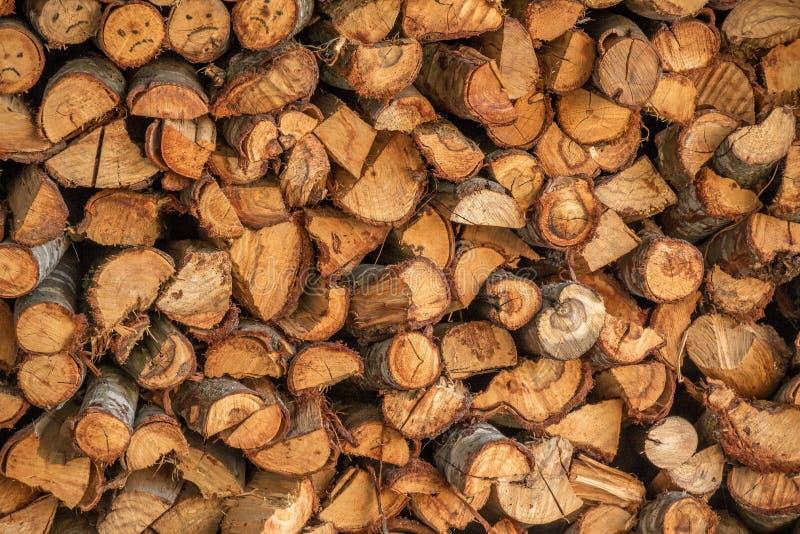 Una pila di legna da ardere per l'inverno immagini stock libere da diritti