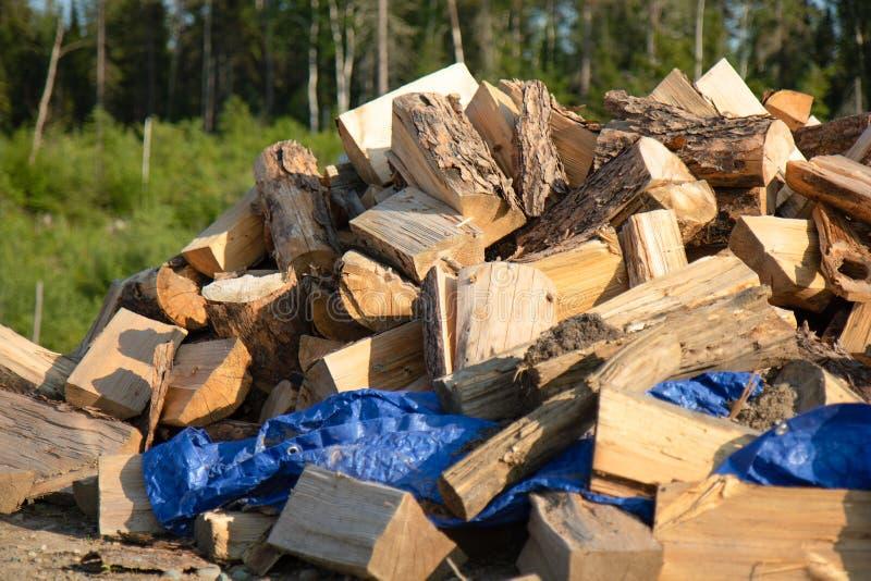 Una pila grande de madera en verano imagenes de archivo