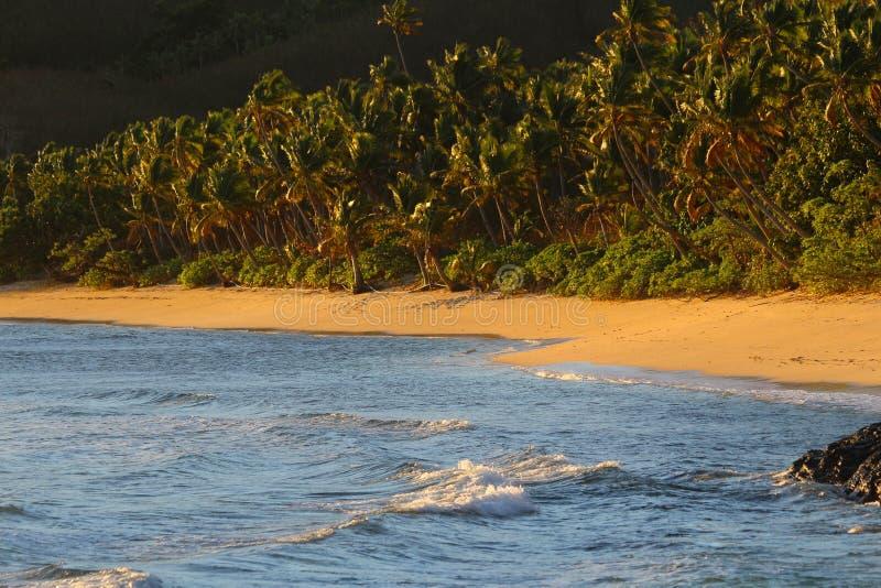 Una playa de la arena en una isla tropical, Fiji foto de archivo libre de regalías