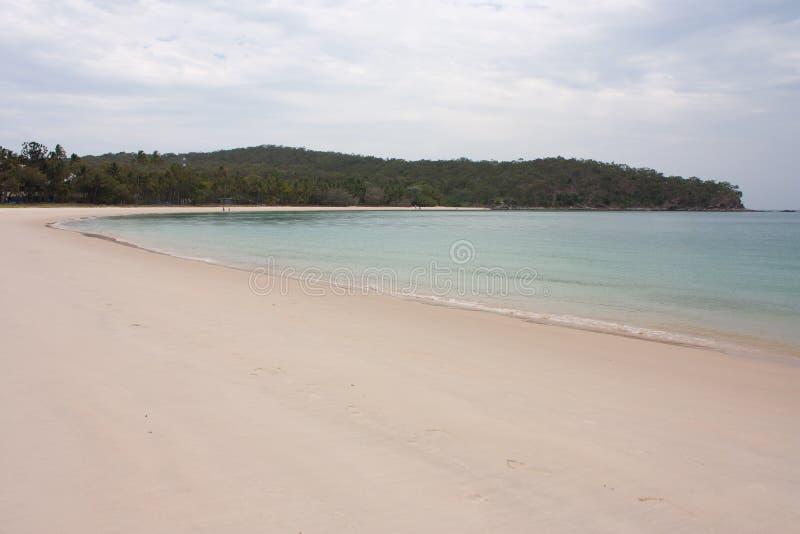 Una playa y un bosque tropical en el fondo en la gran isla de Keppel en el trópico del área del Capricornio en Queensland central fotos de archivo