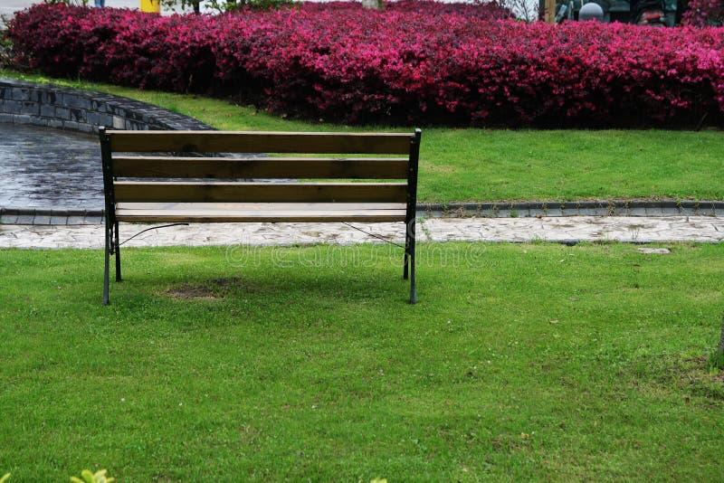 Una presidenza in giardino in Zhangjiang Schang-Hai immagine stock libera da diritti