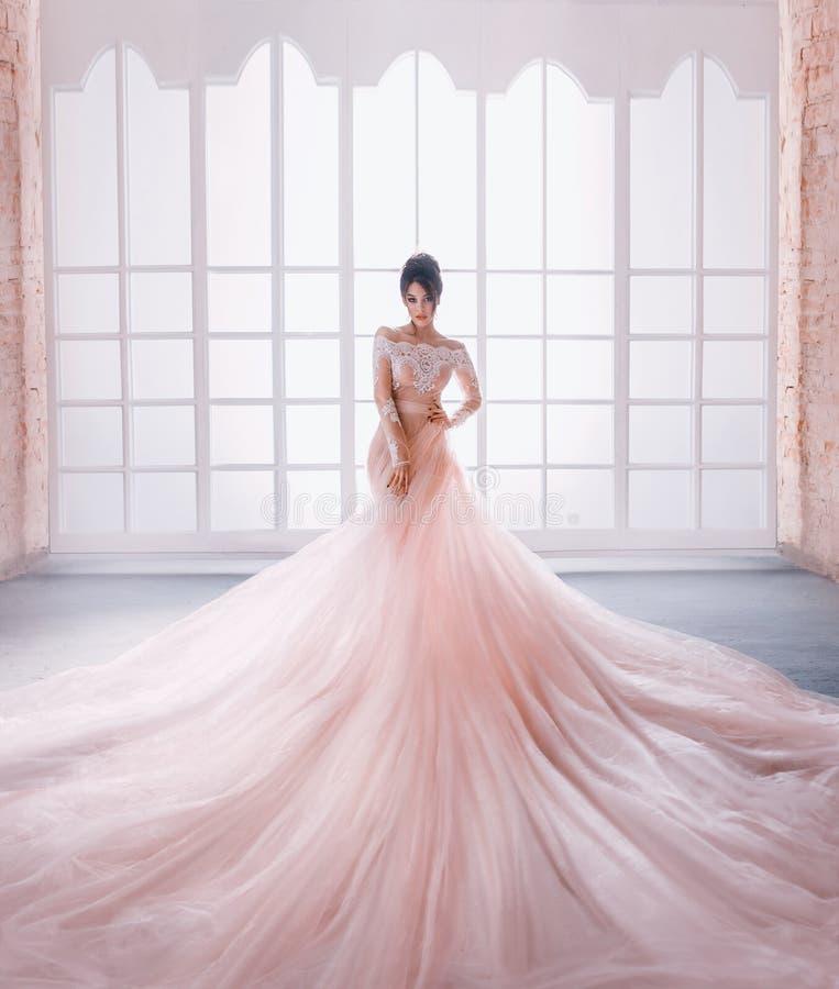 Una princesa joven en un vestido costoso, lujoso con un tren largo se coloca contra la perspectiva de un vintage, alto fotos de archivo libres de regalías