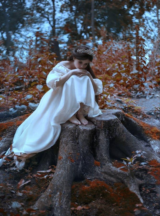 Una princesa joven, triste con el pelo muy largo se sienta en un tocón grande de un árbol viejo y espera a su príncipe La muchach fotos de archivo