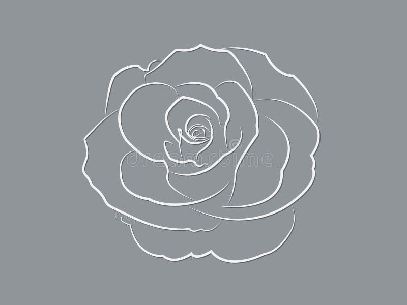 Una progettazione rosa bianca fresca del fiore fiorendo così bella con le linee su fondo scuro illustrazione vettoriale