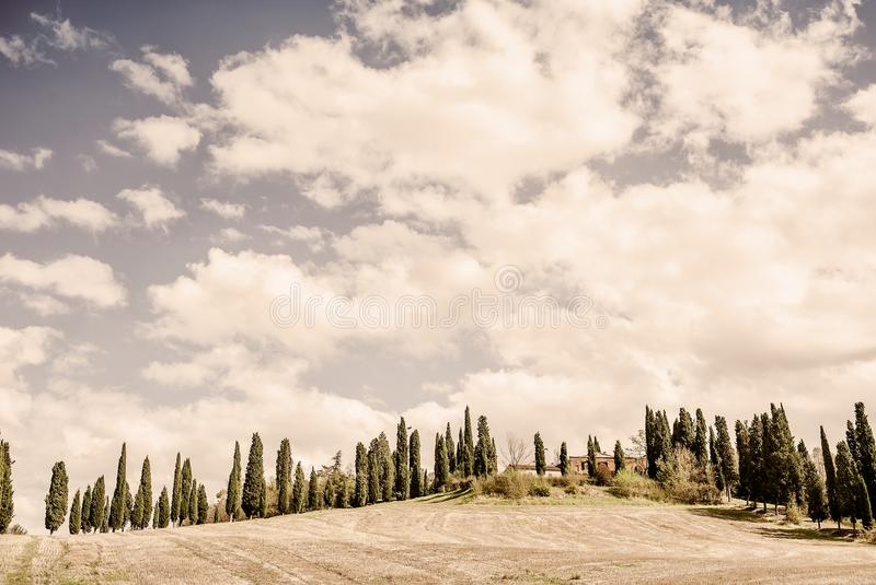 Una proprietà della Toscana - paese con una strada o uno Strada allineata Cypress tipica Bianca immagini stock