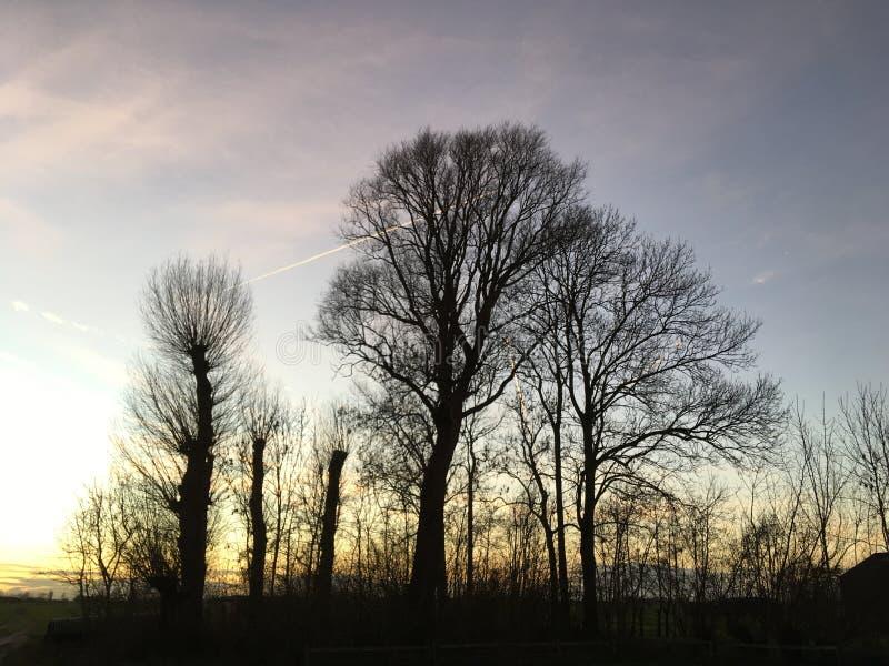 Una puesta del sol de enero fotografía de archivo